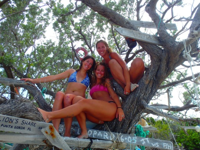 """In the """"Cruiser Tree"""" hanging our trinket"""
